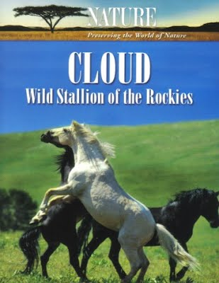Клауд / Cloud: Wild Stallion of the Rockies